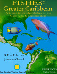 Greater Caribbean Shorefishes
